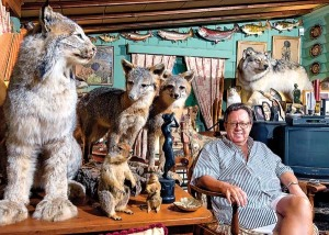 (8/2/14) - (Harrisonburg) Gregory Speck sits admist just a few of the 200 hundred pieces of taxidermy he has collected since the early 90s, which he displays in both his Harrisonburg Home and New York City apartment. Speck, neither a hunter nor taxidermist, has collected hundreds of species of mammals, fish, and birds from all over the world. (Jason Lenhart/Daily News-Record)